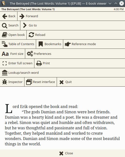 Ebook viewer, controls