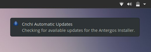 Installer updates check in the live session