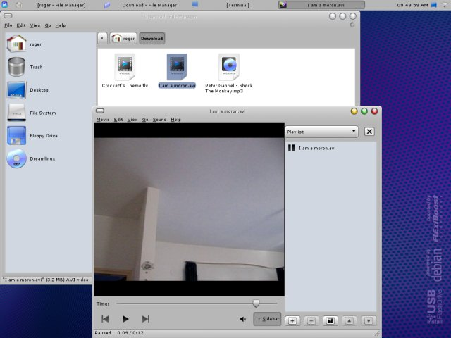 Dreamlinux avi works