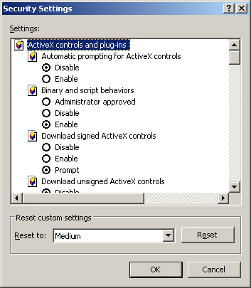 IE custom settings