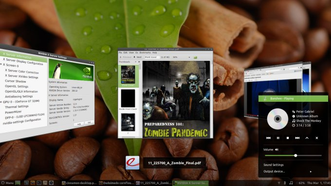 Linux Mint with Cinnamon