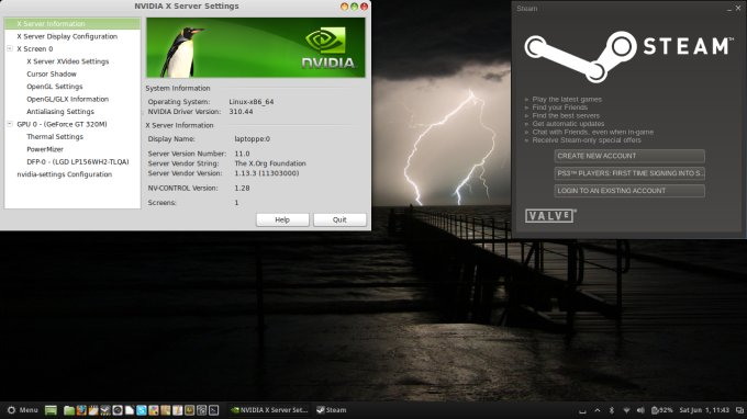 Nvidia & Steam setup